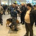 Взрыв в Домодедово: кто виноват?