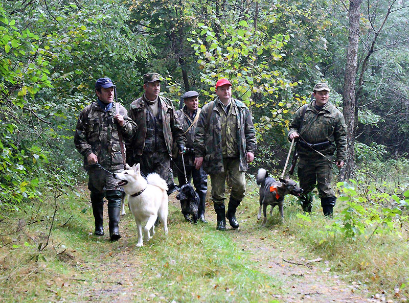 Некоторые особенности национальной коллективной охоты