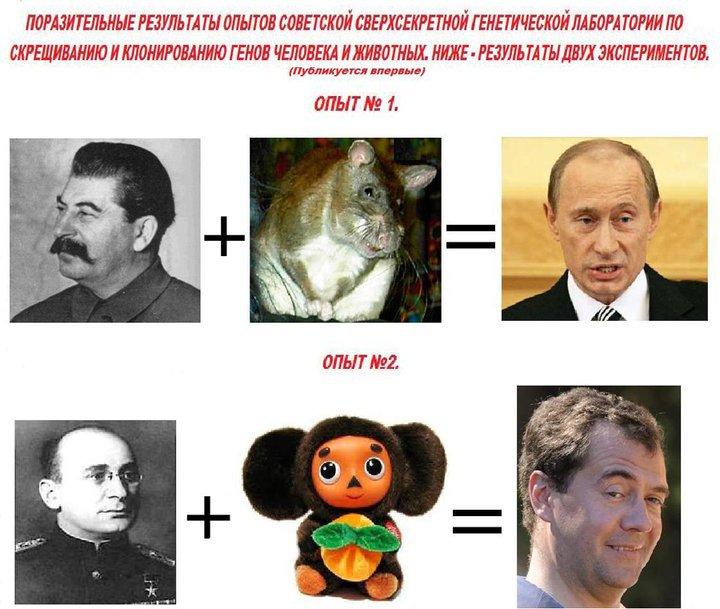«Медведев против Путина — выбора нет?»