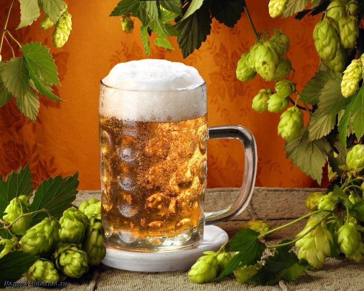 Домашняя пивоварня – почувствуй себя пивоваром!