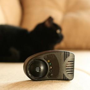 Ультразвуковой отпугиватель мышей — полезное приобретение к дачному сезону