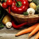 Эксперты назвали области Украины с рекордным урожаем овощей