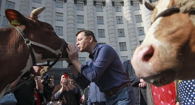 Политолог: кто-то целует коров, кто-то говорит про «зубожіння», а кто-то платит дотации гражданам за удержание коров – 2500 грн