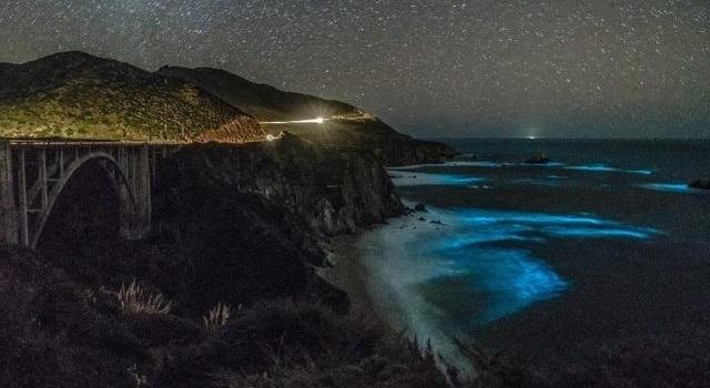 Океан у побережья Калифорнии засветился в ночное время