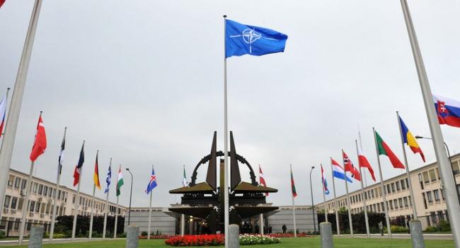 Логика украинцев предусматривает, что в отношении злосчастной Венгрии НАТО должно быть строгой и наказать за Украину, – блогер
