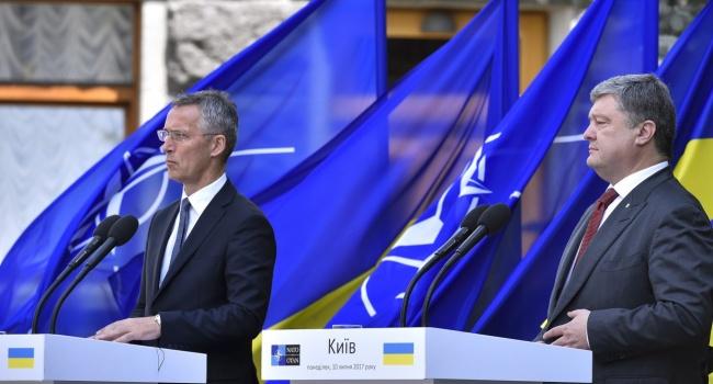 Нусс: Украина со своим трагическим, но военным опытом намного надежнее партнер НАТО, чем Венгрия