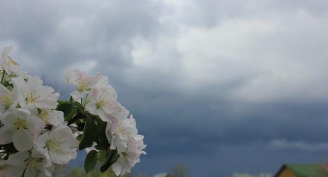 В послепасхальную неделю на Украину обрушатся грозы и дожди