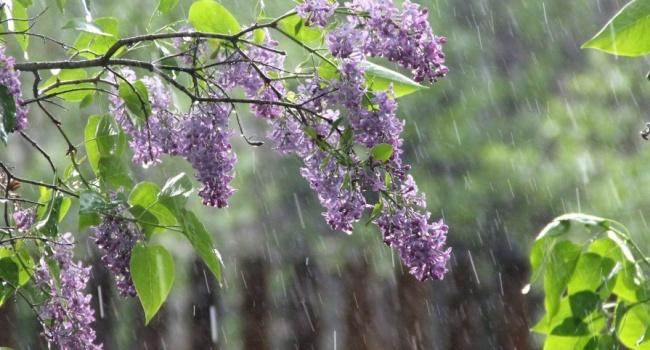 Синоптик дала точный прогноз на майские праздники