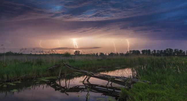 Синоптики: в Украину возвращаются грозовые дожди