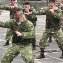 День морской пехоты: морская пехота Украины будет носить новые береты
