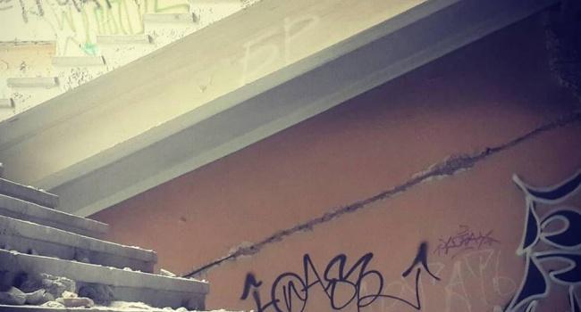 «Нам очень далеко до Европы»: в сети показали фото заброшенного института на Хортице