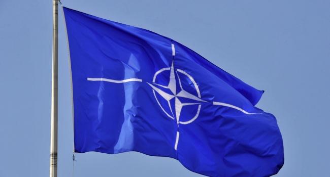 Обозреватель: «США утвердили план для НАТО»