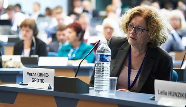 Глава комитета Совета Европы: Венгры в Украине гордятся тем, что не знают государственного языка