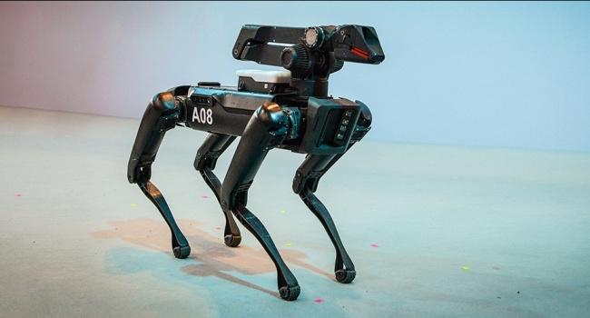 Американские роботы-собаки займутся строительством