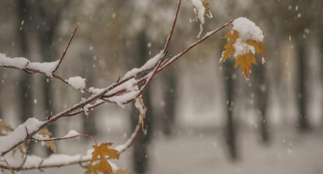 Снова дожди и мокрый снег: прогноз на воскресенье