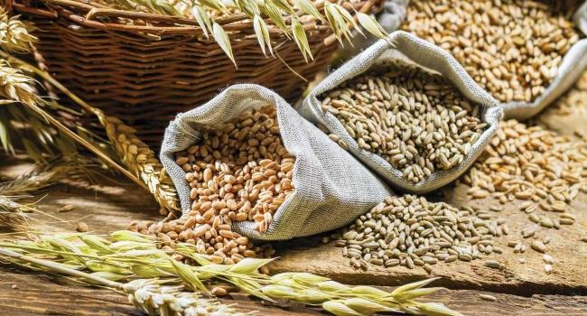 Украина сократила экспорт зерна через морские порты