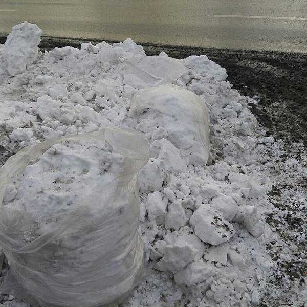 К приезду Путина в Красноярск город завалили мешками со снегом и срубленными елками