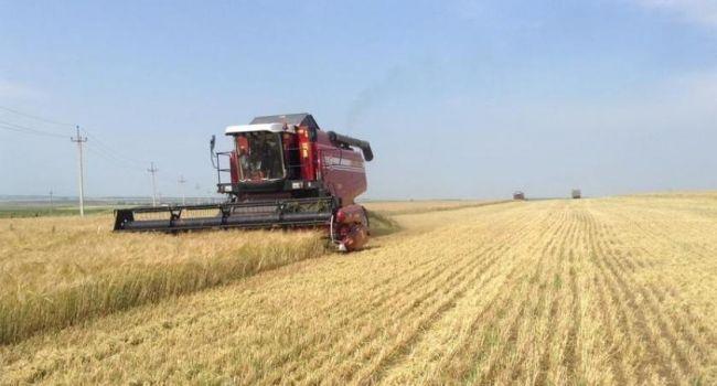 Чаплыга: Аграрная супердержава - это самое настоящее Средневековье, и нас туда толкали