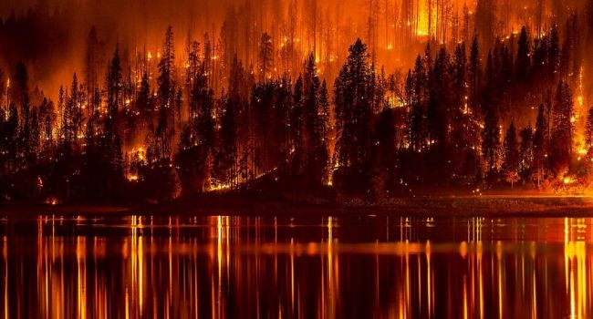 Пожар в Сибири: в РФ начато уголовное дело по факту халатности