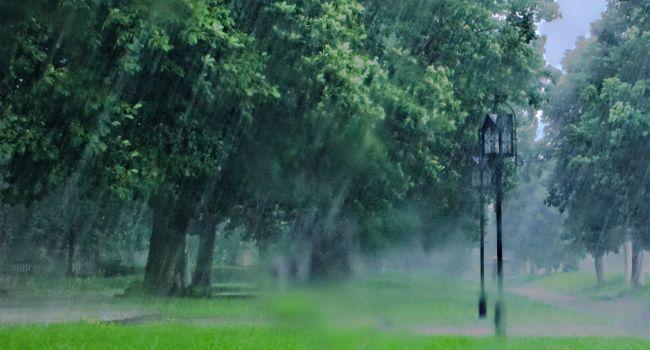 Повсюду дожди и снижение температуры: в Гидрометцентре рассказали о погоде на неделю