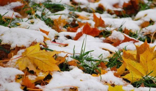 Все время будет идти снег: синоптик рассказал о погоде на всю зиму