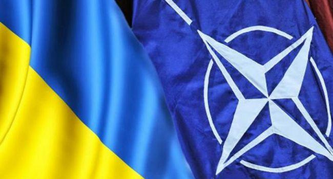 «Вопрос НАТО»: Лапин объяснил, что может стать причиной раскола фракции «Слуги народа»