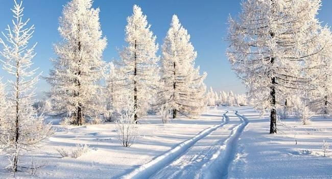 Снег будет не скоро: синоптики дали прогноз на январь