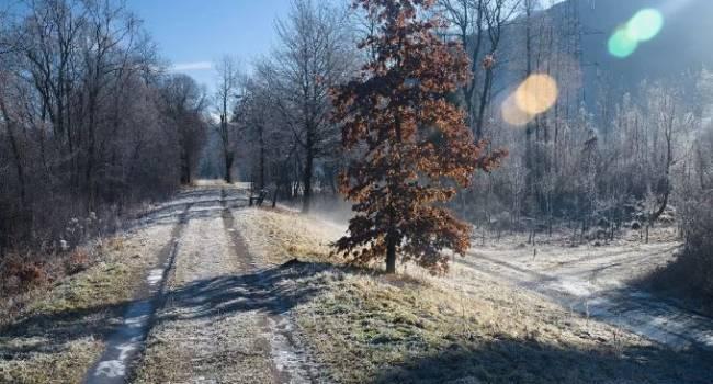 Стремительно холодает: синоптики рассказали о погоде в рождественскую неделю