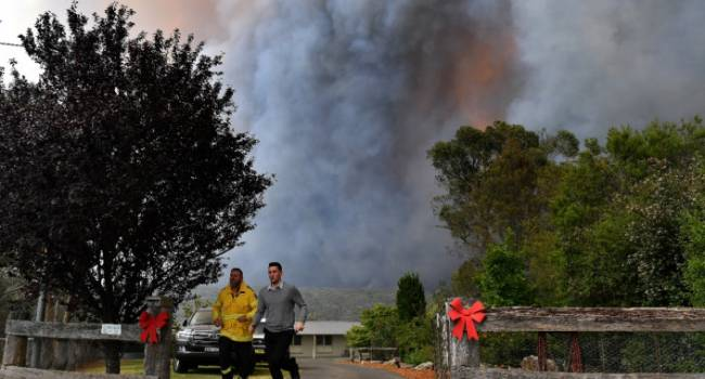 Лесные пожары в Австралии добрались до столицы: город оказался в опасности