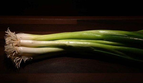 Профилактика гипертонии и другие преимущества: медики рассказали о полезных свойствах зеленого лука