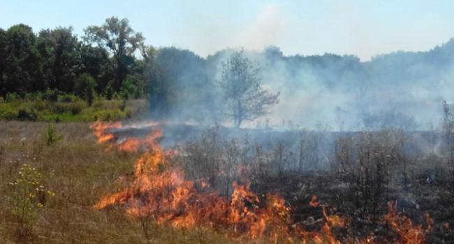 «Сжигала сухую траву, но сожгла себя»: В Житомирской области от ожогов погибла женщина