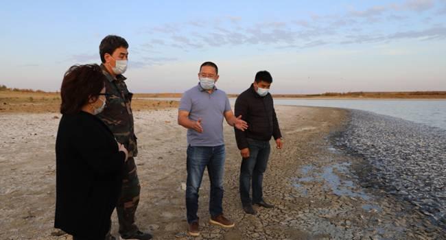 Новая экологическая катастрофа: в одном из регионов России зафиксировали массовый выброс рыбы на берег