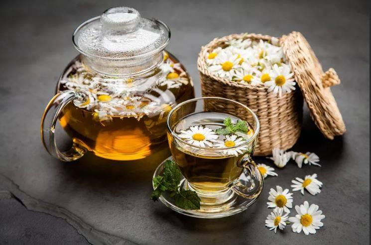 Очень важен для организма: ученые обнаружили уникальные свойства ромашкового чая