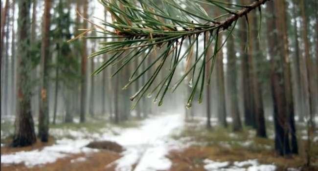 Праздник будет не весенним: синоптик предупредил о ночных морозах в выходные