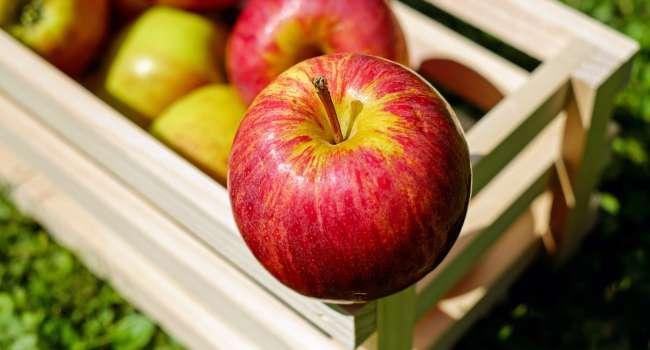 Названы супер продукты, которые очищают печень и способствуют ее здоровью